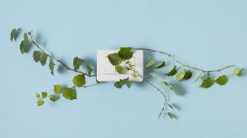 arrangement d'éléments de mode de vie durable nature morte photo