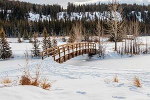 la neige recouvre les étangs en cascade. parc national banff, alberta, canada photo