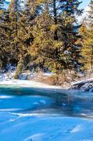 Baker Creek coule le long des rives couvertes de neige. parc national banff, alberta, canada photo