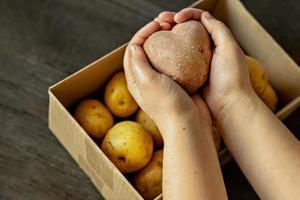 mains féminines tenant une pomme de terre laide en forme de cœur sur une boîte remplie de pommes de terre. nourriture carrée et moche. photo