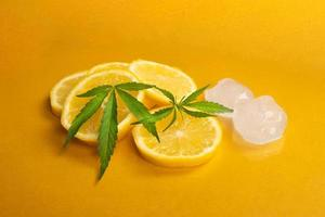 feuilles de chanvre vert et tranches de citron glacé photo