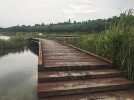 la jetée en bois recouverte de roseaux sur le lac de sokcho city, corée du sud photo