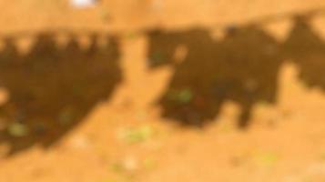 photos floues de vêtements qui sèchent au soleil