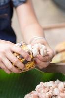 fèves de cacao fraîches dans la main d'un agriculteur photo