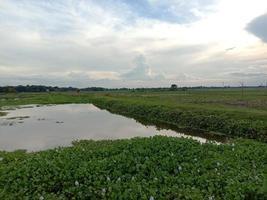 kochuri pana et vue sur le ciel photo
