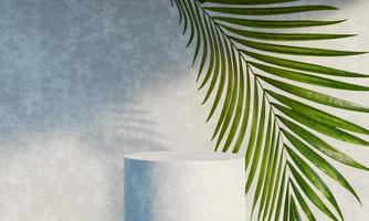 stand de podium d'affichage de produit avec des feuilles de nature d'ombre sur fond de béton. rendu 3D photo