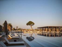 piscine dans un complexe de luxe ou un hôtel donnant sur un grand arbre et la plage sous un ciel bleu photo