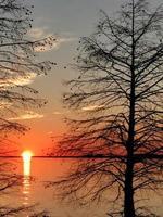 réservoir de monticello en caroline du sud au coucher du soleil photo