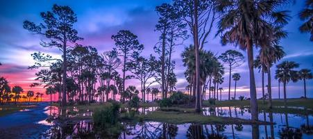 Scènes autour de l'île de chasse en Caroline du Sud en été photo