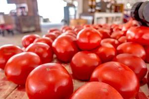 tomates savoureuses exposées au marché de la ferme photo