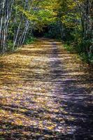 vues le long du sentier des vignes de Virginie en automne photo