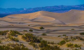 dunes de sable du parc national de la vallée de la mort au coucher du soleil photo