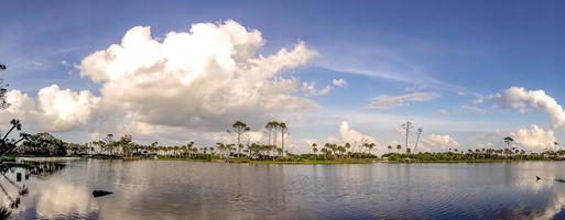 scènes de paysage naturel autour du parc d'état de l'île de chasse en caroline du sud photo