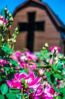 Charlotte, nc avril 2019 - à la bibliothèque publique Billy Graham aux beaux jours photo