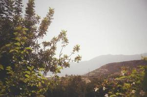 lever de soleil en crète grèce photo