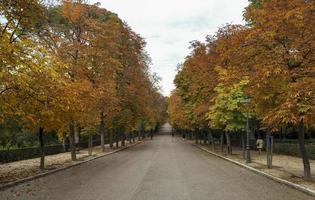 automne dans le parc du retiro à madrid, espagne photo