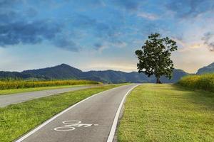 paysage piste cyclable sur une colline avec un arbre photo