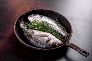 dorado cru avec des épices et des herbes dans une casserole est préparé pour la cuisson photo