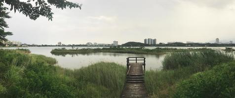 panorama. la jetée en bois recouverte de roseaux sur le lac de la ville de sokcho. Corée du Sud photo