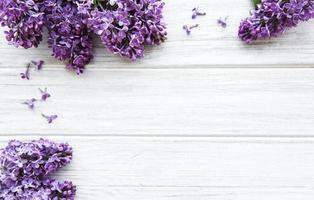 fleurs lilas sur fond de bois blanc photo
