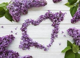 cadre de branches et de fleurs de lilas en forme de coeur photo