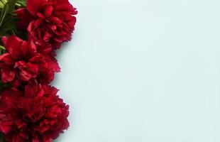 bordure de fleurs de pivoine sur fond bleu pastel photo