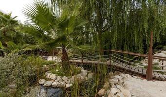 petit pont en bois dans un parc verdoyant de murcie espagne photo