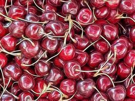 bouchent les baies de cerises de fruits d'été. photo
