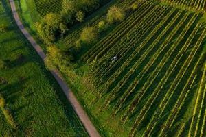un drone vue sur les contreforts vosgiens, france photo