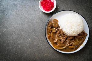 riz au curry de boeuf tranché photo