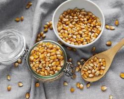 graines de maïs sèches photo