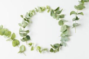cadre de mariage fait avec des feuilles fond blanc isolé. beau concept de photo de haute qualité