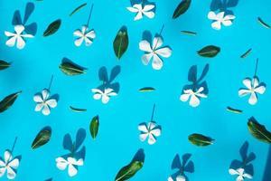 cadre fait de diverses fleurs sur fond de papier. photo