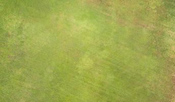 texture naturelle de l'herbe photo