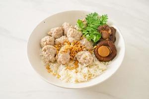 bouillie de riz séché avec bol de porc bouilli photo