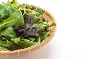 mélange de salade avec roquette, frisée, radicchio et mâche photo