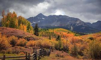 Feuillage d'automne près de wilson Peak dans les montagnes de San Juan au Colorado photo
