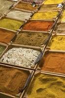 détail des épices chaudes indiennes photo