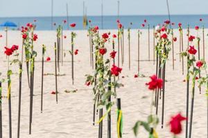 rose rouge dans le sable de la plage de copacabana à rio de janeiro. photo