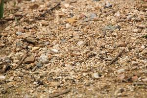 texture de sable avec des pierres pour le fond photo