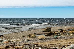Baker Creek un jour de tempête. Parc national du Gros-morne, Terre-Neuve, Canada photo