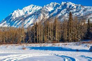 gamme sawback contre un ciel bleu brillant. parc national banff, alberta, canada photo