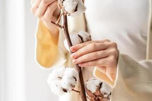 belle femme mains tenant une branche de fleurs de coton photo