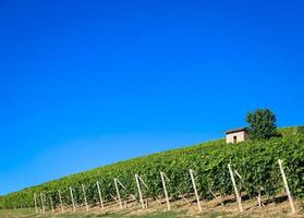 collines du piémont en italie avec une campagne pittoresque photo