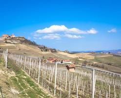 campagne barolo et barbaresco dans la région du piémont photo