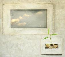 ouvertures sur la nature photo
