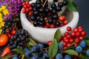 médecine alternative avec des herbes pharmaceutiques fruits et baies photo