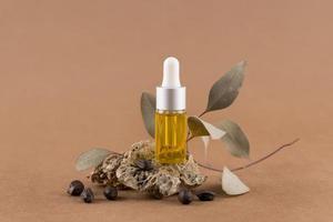 arrangement de traitement sain à l'huile de jojoba photo