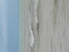 montre l'écume de la vague de la mer, l'étang de la faune, la plage photo