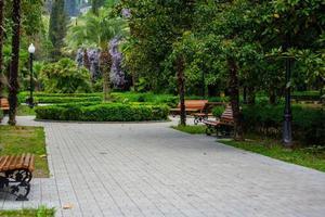 paysage avec un parc en bord de mer. nouvel athos, abkhazie photo